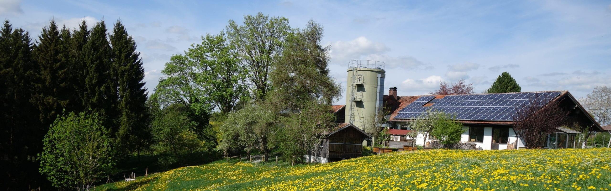 Imkereibedarf Altthaler - unser Betrieb im Sommer